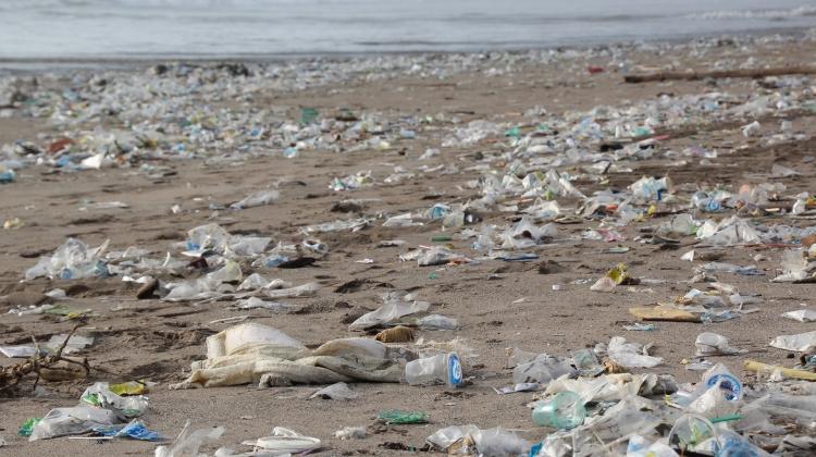 Kan bionedbrydelig plast løse affaldsproblem?