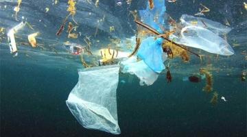 Nu forbyder også New Zealand plastposer