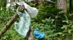 Fælles standarder for indsamling af plast