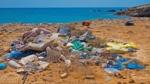 Nordisk opfordring: global plastplan