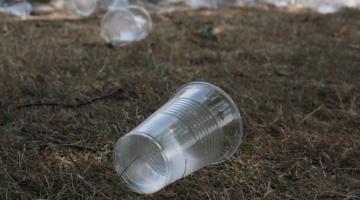Skolelever på affaldsjagt